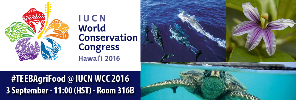 Banner IUCN Congress_web